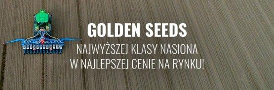 nasiona golden seeds sklep